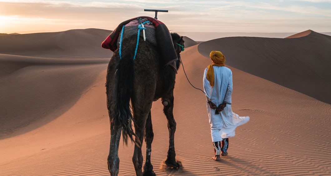 Promenade naar het chameau