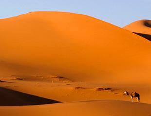 Sensações em abundância à entrada do deserto!