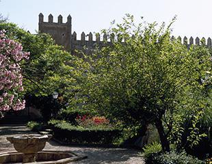Rabat, la ciudad verde
