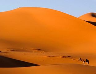 Ett paradis av sand och sten