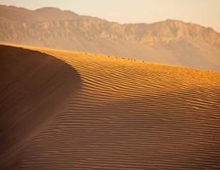 Ouarzazate, Till Sydens rytm
