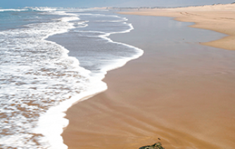 essaouira eachb nature holidays morocco