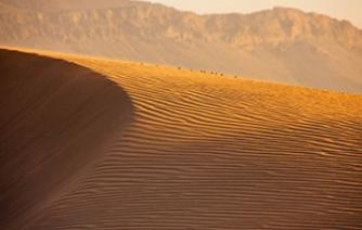 sand of the Moroccan sahara and beautiful landscape