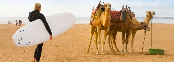 essaouira nautical sport surf camels beach culture tourism morocco