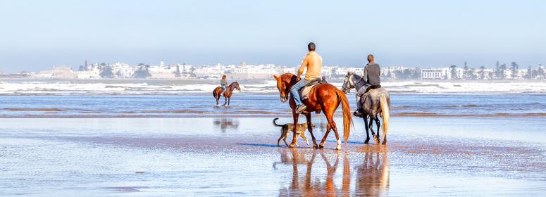 riding a horse in the beach of agadir tourism in morocco