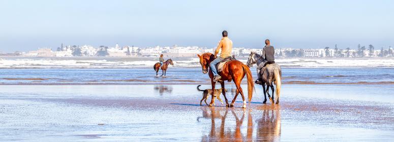 riding a horse in the beach of agadir tourism in morocco