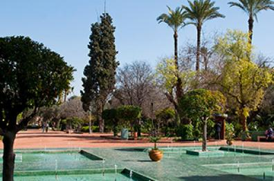 garden-and-swimming-pool-in-hotel-in-marrakech-tourism