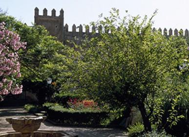 beautiful landscape in the oudayas Garden in Rabat
