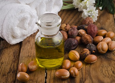 oil of argan a local original product in agadir tourism in morocco