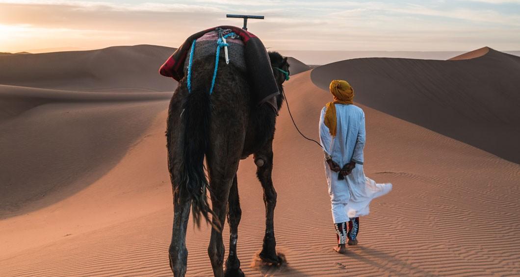 Promenade à dos de chameau
