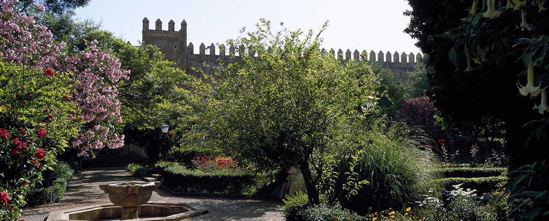 Rabat, die grüne Stadt