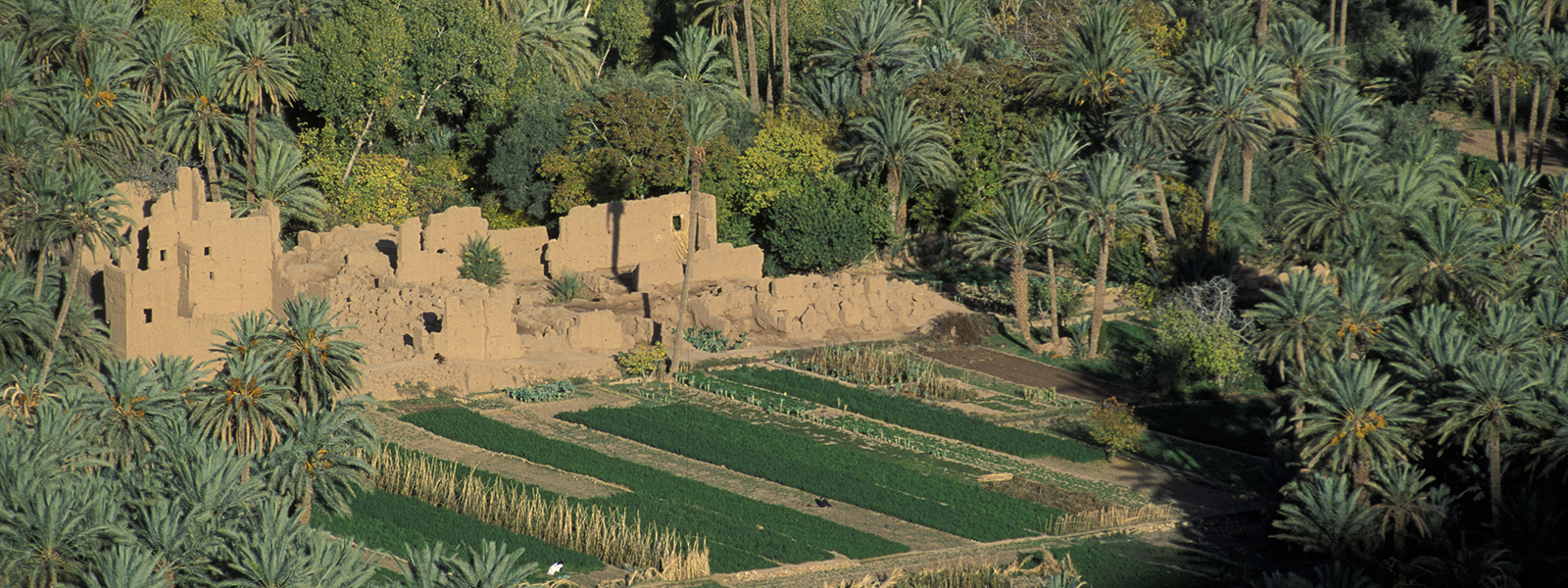 Ouarzazate, At the rhythm of the South