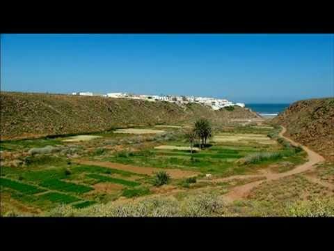 Agadir - Ingénieur agricole