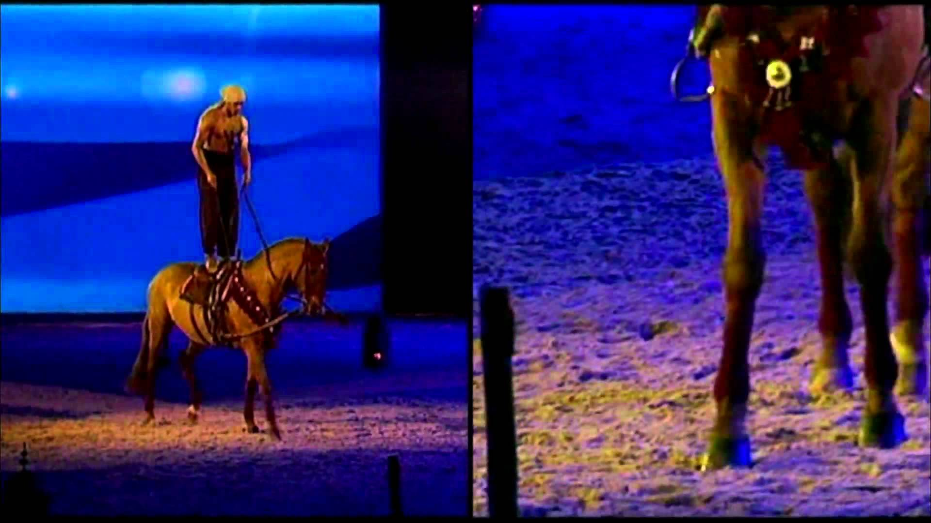 A la rencontre de... Sadek El Bahjaoui - Artiste équestre à Marrakech